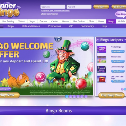 Winner Bingo Home Page