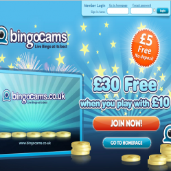 Bingo Cams Homepage pre launch