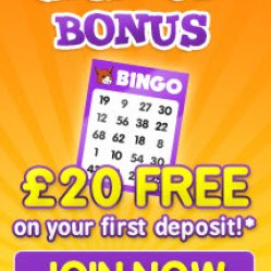 foxy bingo sign up offer