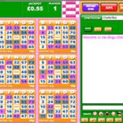 75 ball bingo at bingo ballroom
