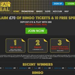 Real Deal Bingo Home Page