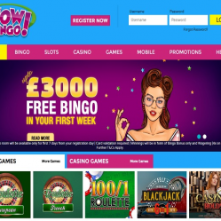 Wow Bingo Home Page