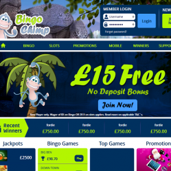 Bingo Chimp Home Page