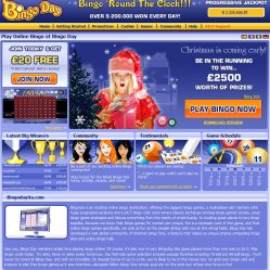 Bingo day homepage screenshot