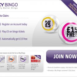 Sky bingo welcome page