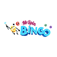 Mr Spin Bingo Logo