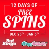 12 Days of Bonus Spins at Bid Bingo