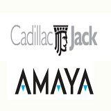 Amaya Gaming Group's Potential Sale of Cadillac Jack Subsidiary