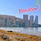 New Advert from Benidorm Bingo