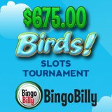 Bingo Billy Hosts $675 Birds Slot Tournament