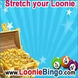 Loonie Bingo Has Progressive Jackpots To Fit Every Budget