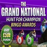 Celebrate the Grand National with Boyle Bingo