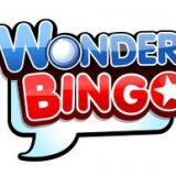 With Wonder Bingo 1 in 5 Players are Winners