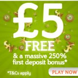 Bingo Giving offer £5 Free to New Players