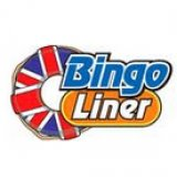 Make it a Fabulous Christmas with Bingo Liner