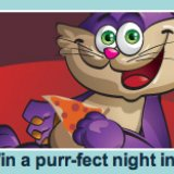Pizza and Movies - Win the Purr-Fect Night In at City Bingo