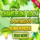 Bingo Hall Launches Chameleon Room