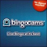 Bingocams Bingo Reviewer's April Site of the Month