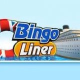 Bingo Liner UK Celebrates New Web Design