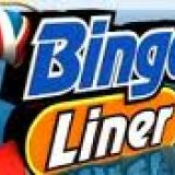 BingoLiner Launches Christmas Promotion
