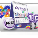 A Day In the Life of Sky Bingo